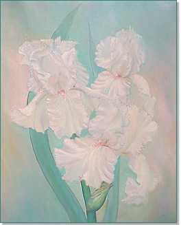 Pink Iris by N. Nadzo